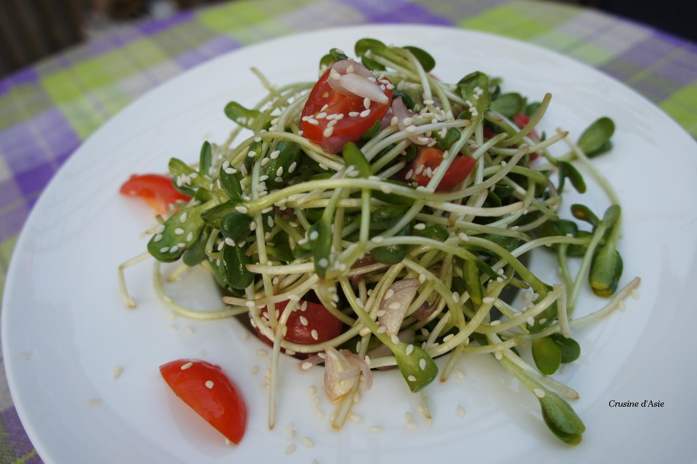 Salade de jeunes pousses de tournesol crusine d 39 asie - Comment faire germer des graines de tomates ...